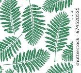 fern leaf pattern   Shutterstock .eps vector #674520535