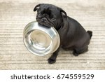 funny pug dog bite stainless...   Shutterstock . vector #674559529