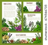 herb  spice and leaf salad... | Shutterstock .eps vector #674566735