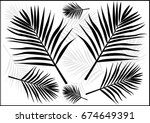 palm tree leaf silhouette... | Shutterstock .eps vector #674649391