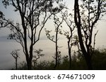 a forrest and a view of tree... | Shutterstock . vector #674671009