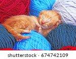 new born baby cat sleeping.... | Shutterstock . vector #674742109