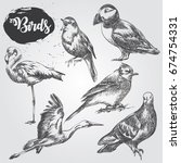 set of hand drawn birds sketch... | Shutterstock .eps vector #674754331