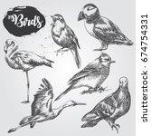 set of hand drawn birds sketch... | Shutterstock .eps vector #674754331