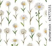 illustrations of chamomile... | Shutterstock . vector #674772151