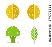 forestry glyph color icon set.... | Shutterstock .eps vector #674775811