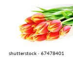 bouquet of many red tulips | Shutterstock . vector #67478401