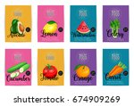 avocado  lemon  watermelon ... | Shutterstock .eps vector #674909269
