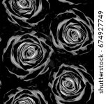 beautiful black and white... | Shutterstock . vector #674927749