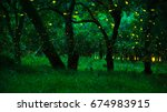 firefly flying in the forest.... | Shutterstock . vector #674983915