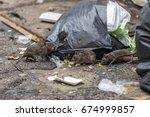 Three Dirty Mice Eat Debris...