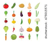 cartoon flat vegetables organic ... | Shutterstock .eps vector #675015571