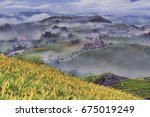 beautiful lily field with...   Shutterstock . vector #675019249