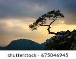 sokolica peak in pieniny...   Shutterstock . vector #675046945