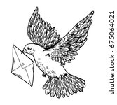 postal dove with letter vector... | Shutterstock .eps vector #675064021