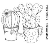 hand drawn set of succulents or ... | Shutterstock .eps vector #675085861