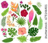 vector set of vivid exotic... | Shutterstock .eps vector #675146401