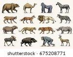 gorilla  moose or eurasian elk  ... | Shutterstock .eps vector #675208771