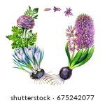 watercolor spring flowers... | Shutterstock . vector #675242077
