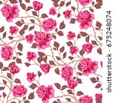 floral seamless pattern with... | Shutterstock .eps vector #675248074
