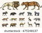 Gorilla  Moose Or Eurasian Elk...