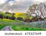 Serene Natural Landscape At...