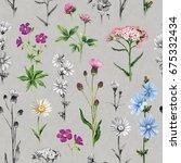 watercolor illustrations of... | Shutterstock . vector #675332434