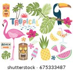 Tropical Vector Collection.
