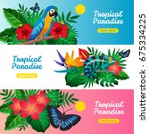 three colored tropical... | Shutterstock .eps vector #675334225