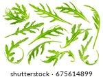 rucola or arugula leaves...   Shutterstock . vector #675614899
