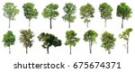 collection of isolated trees on ... | Shutterstock . vector #675674371