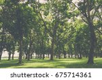 green forest trees. | Shutterstock . vector #675714361