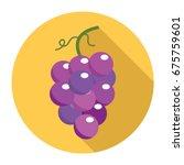 grape icon. flat grape icon.... | Shutterstock .eps vector #675759601