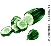 fresh green cucumber sliced ... | Shutterstock . vector #675806761
