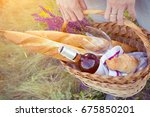 summer   girl with a basket... | Shutterstock . vector #675850201