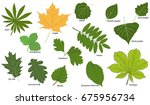 Set Of Green Tree Leaves With...