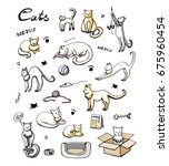Stock vector cute cats icons set hand drawn doodles set with cats and care products vector eps 675960454