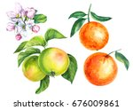 set of fruits  apples and... | Shutterstock . vector #676009861