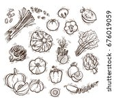 fresh vegetables vector set can ... | Shutterstock .eps vector #676019059