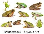 collection of european green...   Shutterstock . vector #676035775