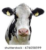 friesian cow on white... | Shutterstock . vector #676058599