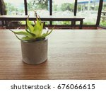 small plant on wooden table in... | Shutterstock . vector #676066615