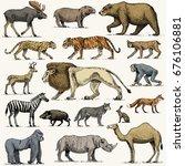 gorilla  moose or eurasian elk  ... | Shutterstock .eps vector #676106881