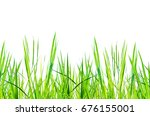 green grass on white background ... | Shutterstock . vector #676155001
