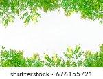 green grass on white background ... | Shutterstock . vector #676155721