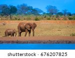 a young elephant right next to... | Shutterstock . vector #676207825