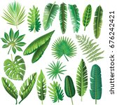 vector tropical leaves on white ... | Shutterstock . vector #676242421