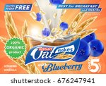 oat flakes with blueberry... | Shutterstock .eps vector #676247941