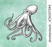 octopus ink sketch on old paper ... | Shutterstock .eps vector #676257394