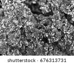 black and white abstract of... | Shutterstock . vector #676313731
